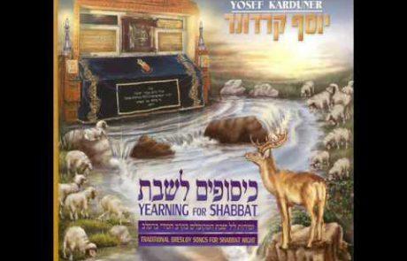Yosef Karduner: Breslov Melody for Eishet Chayil