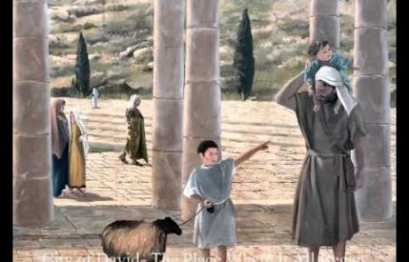City of David: The Place Where it all Began