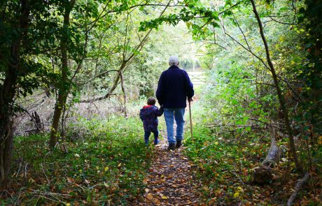 A Multi-Generational Blessing Over the Children