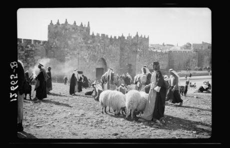 The History of the Old City of Jerusalem