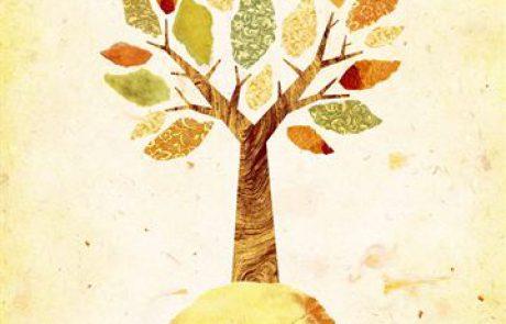 TALI Curriculum: ADAMA – Ecology Through Jewish Sources (Hebrew, Grade 2-6)